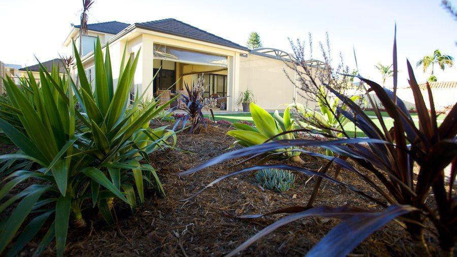 Garden maintenance in Melville