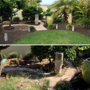 Perth gardening service cleanup