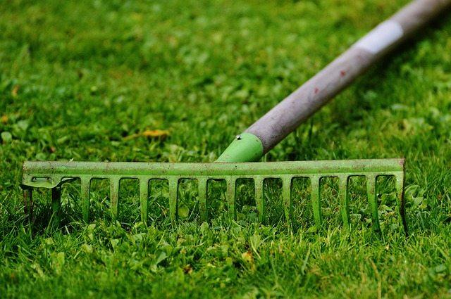 raking grass lawn topdressing Perth