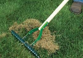 raking and maintaining gardens perth