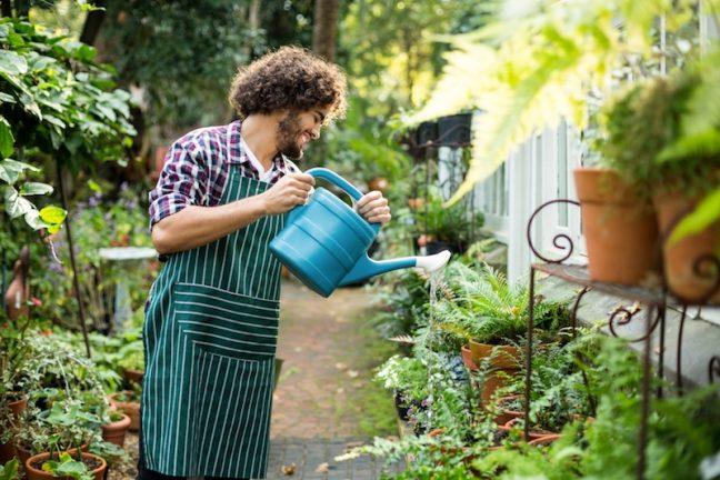 Manual garden irrigation