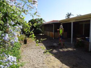 installing new lawn in Perth garden