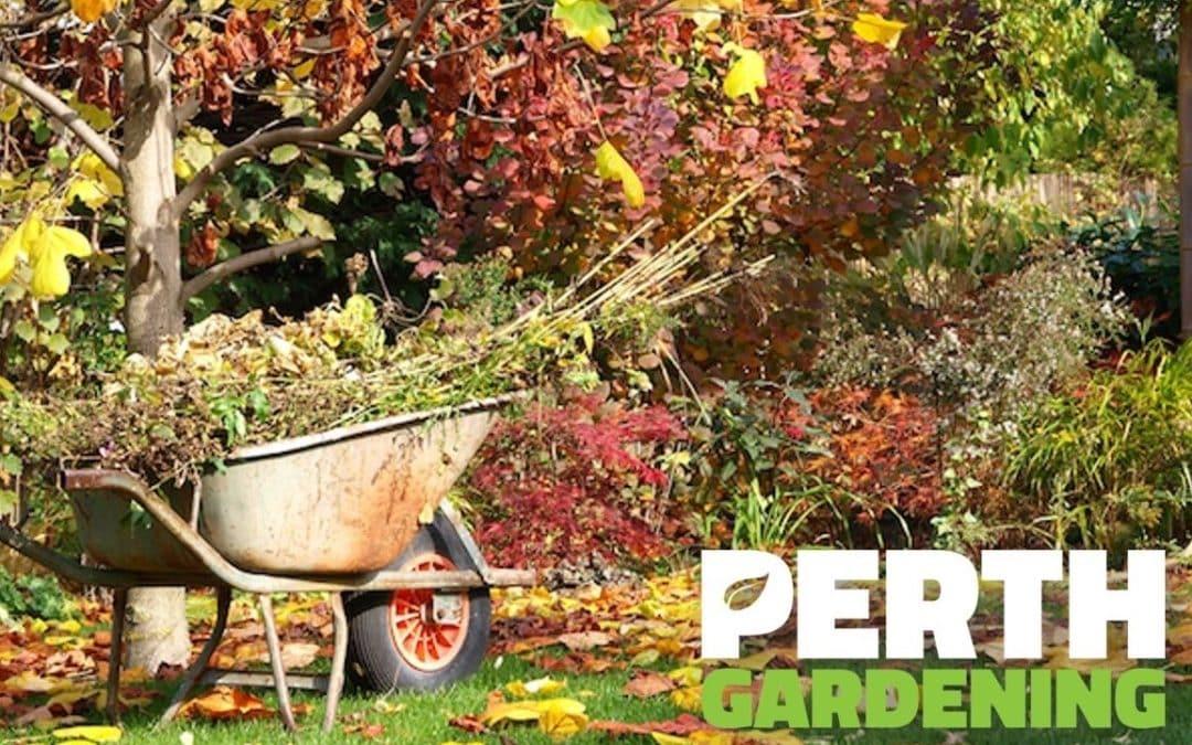 autumn-garden-perth