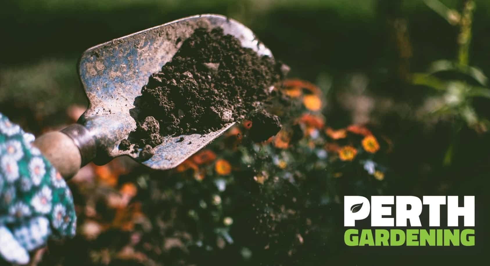 fertilizing-garden-soil