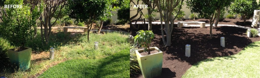 Before and After Backyard makeover - gardeners Perth