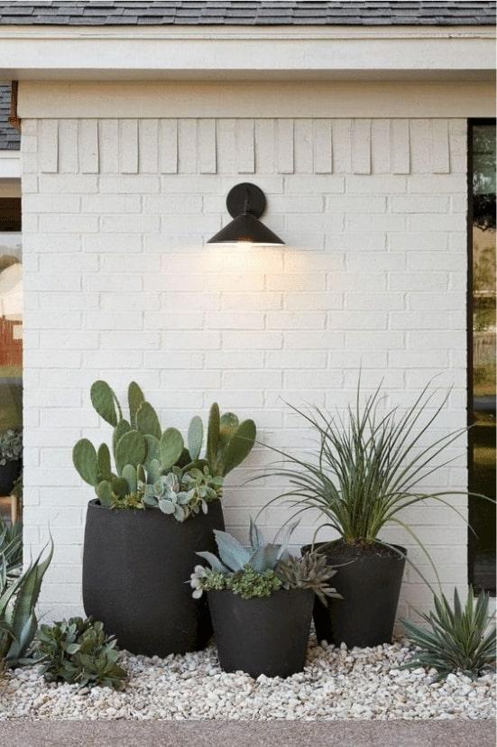 Beautiful Flower Pot Ideas