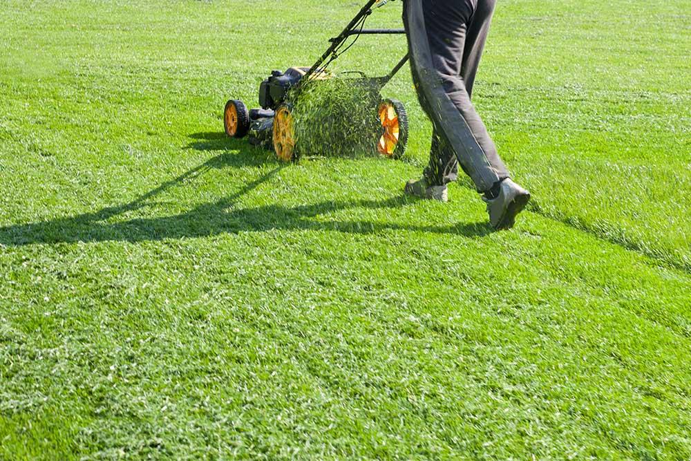 Lawn Care Services in Perth