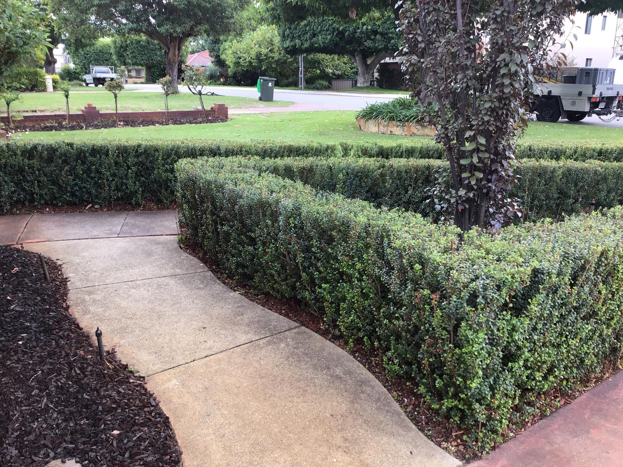 Small Modern Front Yard Landscaping Ideas Grass
