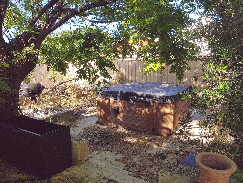 Garden Maintenance Before